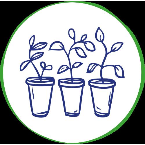 Pflanzen kaufen in Altenstadt